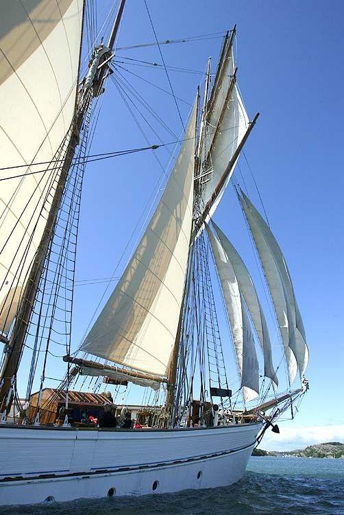 Kajuitzeilboten en Zeiljachten Topsail Schooner foto 5
